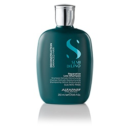 SDL Reconstruction Shampoo